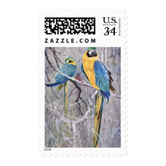 Blue and Gold Macaws Art Postage
