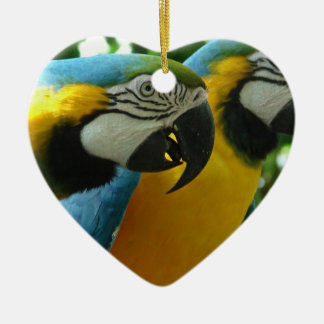 Blue and Gold Macaws Ornament
