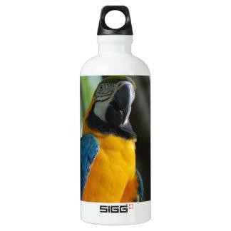 Blue and Gold Parrot SIGG Traveler 0.6L Water Bottle