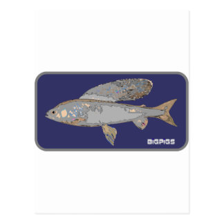 Blue and Gray Grayling Postcard