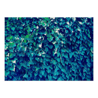 Blue And Green Foliage Poster