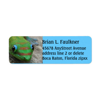 Blue and Green Gecko Label