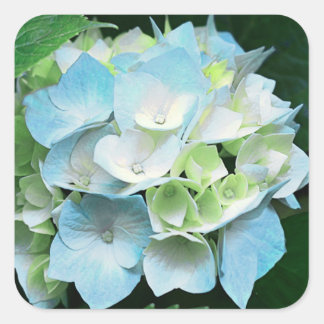 Blue and Green Hydrangea Floral Stickers Seals