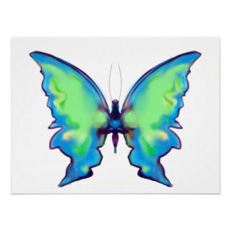 Blue and Green Irridescent Beautiful Butterfly Poster