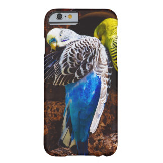Blue and Green Parakeets, Bird Photography Barely There iPhone 6 Case