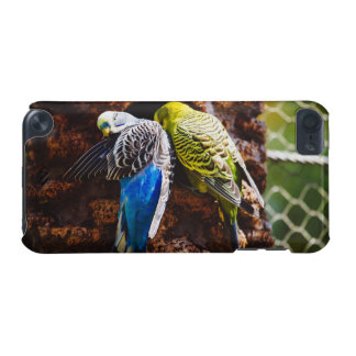 Blue and Green Parakeets, Bird Photography iPod Touch (5th Generation) Cases