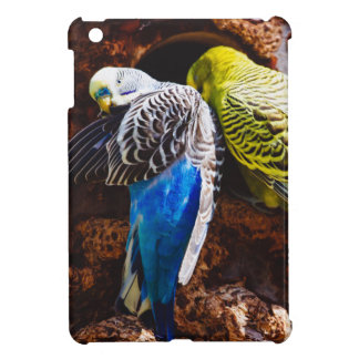 Blue and Green Parakeets, Bird Photography Cover For The iPad Mini
