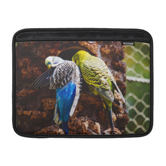 Blue and Green Parakeets, Bird Photography Sleeves For MacBook Air