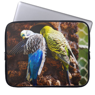 Blue and Green Parakeets, Bird Photography Computer Sleeves