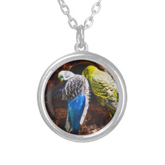 Blue and Green Parakeets Bird Photography Jewelry