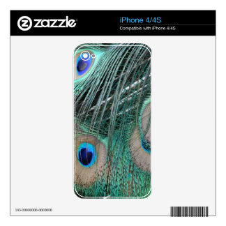 Blue And Green Peacock Feathers iPhone 4 Decals