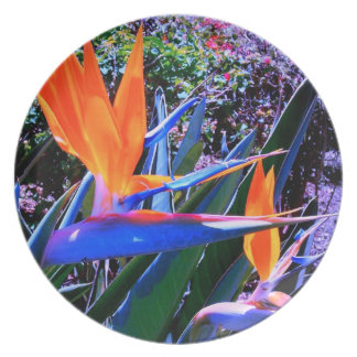 Blue and Orange Bird-of-Paradise Party Plate