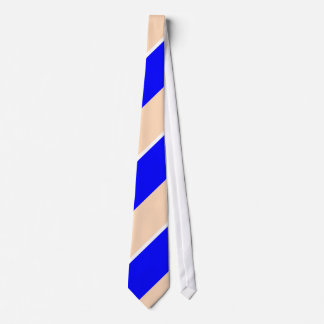 Blue and Peach Neck Tie