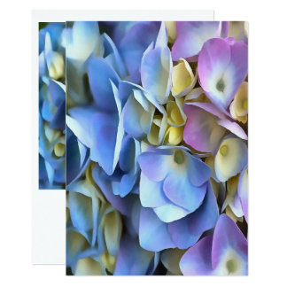 Blue and Pink Hydrangea Flowers Card
