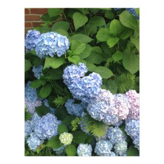Blue And Pink Hydrangeas Letterhead
