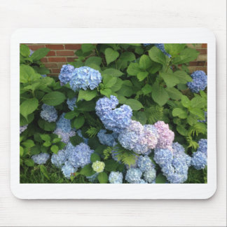 Blue And Pink Hydrangeas Mouse Pad