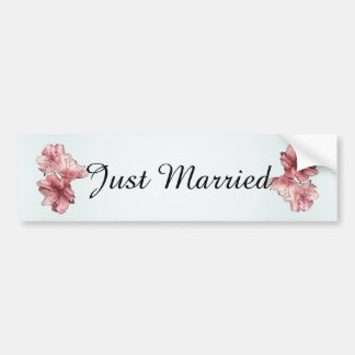 Blue and Pink Illustrated Flowers Customize Sets Bumper Sticker