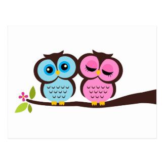 Blue and Pink Owls Wedding Postcard