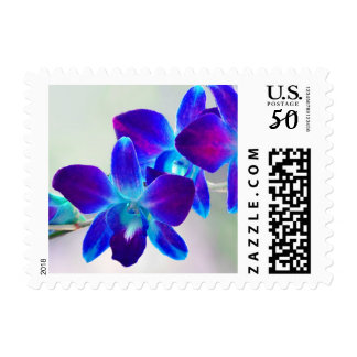 Blue and Purple Dendrobium Orchid Postage Stamps