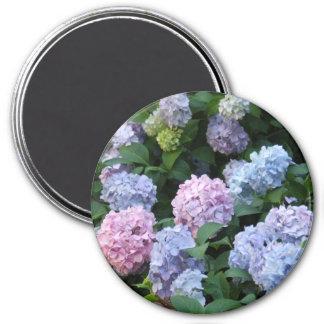 Blue and Purple Hydrangea Magnet