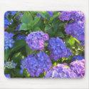 Blue and Purple Hydrangeas Mouse Pad