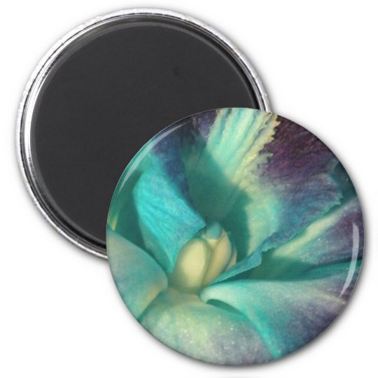 Blue and purple orchid close up magnet