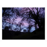 blue and purple sunset obscured by trees print