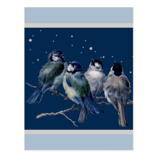 Blue and Silver Christmas Night Postcard