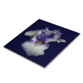 Blue and White Bearded Iris Flower Ceramic Tile