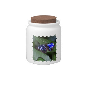 Blue and White Butterfly Candy Jar