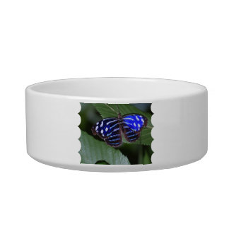 Blue and White Butterfly Pet Bowl