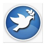 Blue and White Dove of Peace Stretched Canvas Prints