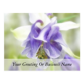 Blue And White Frilly Columbine Postcard