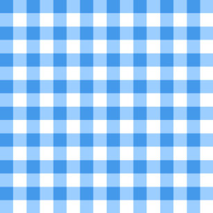 76d8a369a51 Make Your Own Blue And White Gingham Blanket - Bundle Up In Yours ...