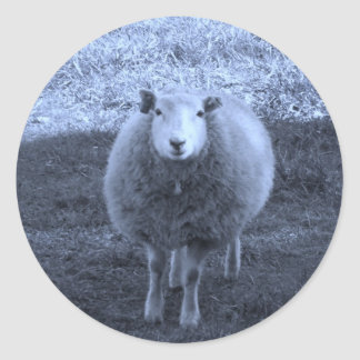 Blue and White  Mother sheep Classic Round Sticker