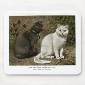 Blue and White Short Haired Cats Artwork Mousepads