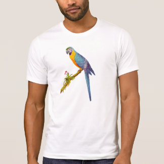 Blue and Yellow Are, Vintage Illustration T-Shirt