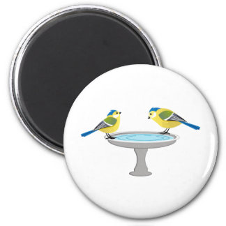 Blue and Yellow Birds at the Spa Magnet