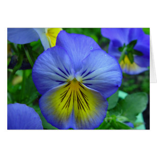 Blue and Yellow Flower Greeting Card