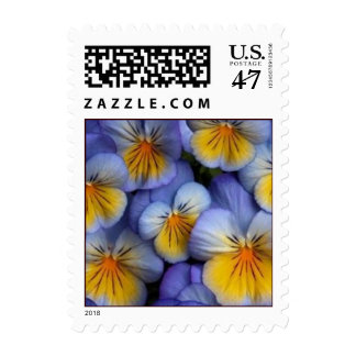 Blue and Yellow Flowers postage stamp - Pansy