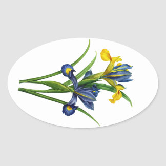 Blue and Yellow Iris By Redoute Oval Sticker