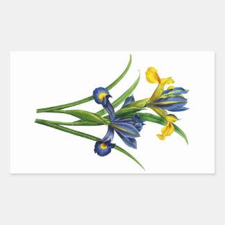 Blue and Yellow Iris By Redoute Rectangular Sticker