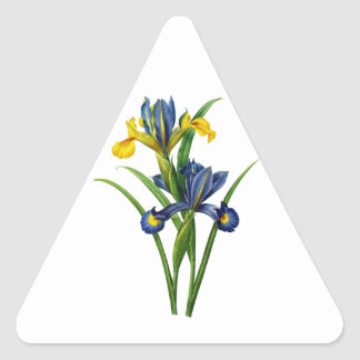 Blue and Yellow Iris By Redoute Triangle Sticker