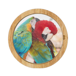 Blue-and-Yellow Macaw and Scarlett Macaw Round Cheese Board