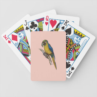 blue-and-yellow macaw, tony fernandes.tif bicycle playing cards