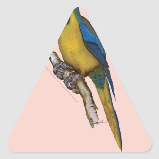 blue-and-yellow macaw, tony fernandes.tif triangle sticker