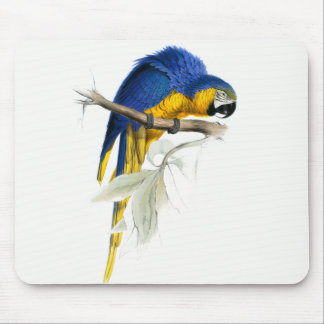 Blue and Yellow Macaw Vintage Mouse Pad