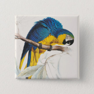 Blue and Yellow Maccaw Button