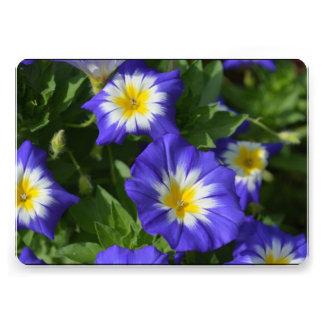 Blue and Yellow Morning Glories Custom Invitations