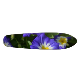 Blue and Yellow Morning Glories Skate Board Deck